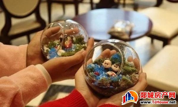 中筑·博雅郡   微景观DIY*玻璃瓶里面的伊甸园 创造属于自己的童话世界
