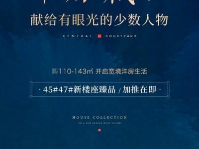 中央华庭:洋房藏品 献给有眼光的少数人物